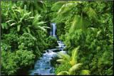 Rainforest (Waterfall) Art Poster Print Druck aufgezogen auf Holzplatte