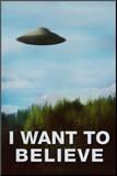The X-Files I Want To Believe TV Poster Print Druck aufgezogen auf Holzplatte