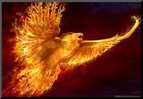 Phoenix Rising Kunst op hout van Tom Wood