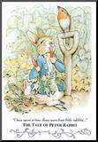 Beatrix Potter Tale Peter Rabbit Art Print POSTER cute Mounted Print