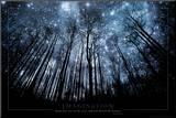 Verbeelding, Sterrenhemel door boomtakken, Engelse tekst: Imagination Keep Your Eyes on the Stars Kunst op hout