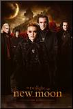 The Twilight Saga, New Moon Montert trykk
