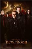 Twilight - Nymåne Monteret tryk