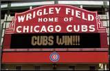 Les Cubs vaincront! Affiche montée sur bois