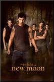 Filmposter Twilight, New Moon, 2009 Kunst op hout
