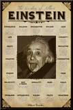 Albert Einstein Mounted Print
