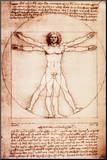 Vitruvianischer Mensch Druck aufgezogen auf Holzplatte von  Leonardo da Vinci