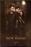 Twilight - Chapitre 2: tentation Affiche montée sur bois
