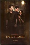 Filmposter Twilight, New Moon, 2009 Kunst op hout
