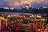 Grand Teton Impressão montada