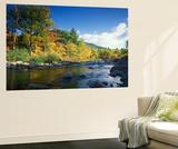 Swift River in Autumn, White Mountains National Forest, New Hampshire, USA Veggmaleri av Adam Jones