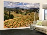 View of Corbieres Vineyard, Darban-Corbieres, Aude, Languedoc, France Poster géant XXL par David Barnes