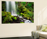 Waterfall, Mt Hood National Forest, Columbia Gorge Scenic Area, Oregon, USA Poster géant par Stuart Westmorland
