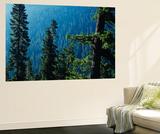 View of Mt Rainier National Park, Washington, USA Art by Scott T. Smith