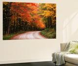 Road Through Autumn Trees, Green Mountain National Forest, Vermont, USA Print by Adam Jones