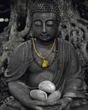 Buddha Stone Prints