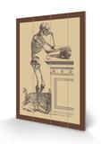 Leaning Skeleton Holzschild von Andreas Vesalius