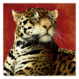 Fire Cat Premium Giclee Print by Will Bullas