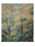 Primavera Lámina giclée prémium por Stephen Henning