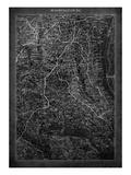 Washington DC Map A Premium Giclee Print by  GI ArtLab