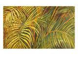 Tropical Light Impressão giclée premium por Darrell Hill