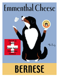 Bernese Emmenthal Premium Giclee Print by Ken Bailey