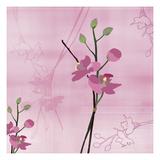 Zen Blossoms 3 Exklusivt gicléetryck av Kate Knight