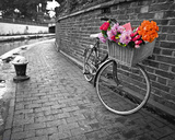 Bicycle of Love I Posters van Assaf Frank