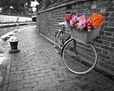 Bicycle of Love I Pôsteres por Assaf Frank