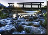 Morning Creek Stretched Canvas Print by Dale MacMillan