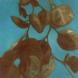 Eucalyptus II Prints by Julianne Marcoux
