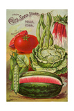 Seed Catalog Captions (2012): Cole's Seed Store, Pella, Iowa, Garden, Farm and Flower Seeds, 1896 Poster