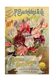 Seed Catalog Captions (2012): F. Barteldes and Co. Price List and Descriptive Catalogue 高画質プリント