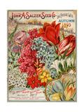 Seed Catalog Captions (2012): John A. Salzer Seed Co. La Crosse, Wisconsin, Autumn 1895 Poster