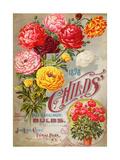 John Lewis Child's 1898 Fall Catalogue: Bulbs Pósters