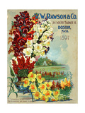 Seed Catalog Captions (2012): W.W. Rawson and Co, Boston, Massachusetts, 1897 Posters