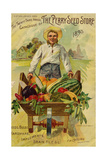 Seed Catalogues: The Perry Seed Store. Syracuse, NY, 1893 Prints