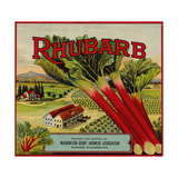 Fruit Crate Labels: Rhubarb; Packed and Shipped by Washington Berry Growers Association Posters