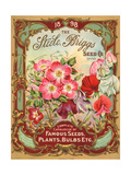 Seed Catalogues: Steele, Briggs Seed Co. Ltd. Complete Catalogue of Famous Seeds, Plants, and Bulbs ポスター