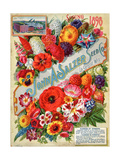 Seed Catalogues: John A. Salzer Seed Co. La Crosse, Wisconsin, Spring 1898 アート