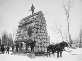 Big Load of Logs on a Horse Drawn Sled in Michigan, Ca. 1899 Foto