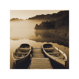 Tranquil Mist II Poster von Peter Adams