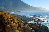 Kalifornian rannikko Valokuvavedos tekijänä Howard Ruby