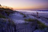 Lavender Beach II Valokuvavedos tekijänä Alan Hausenflock