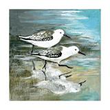 Sea Birds II Posters af Gregory Gorham