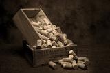 Wine Corks Still Life I Photographic Print by C. McNemar