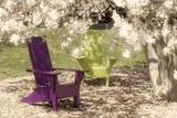 Under the Magnolia Tree Impressão fotográfica por C. McNemar