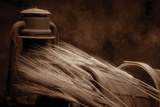 Still Life with Wheat I Impressão fotográfica por C. McNemar