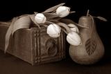 Tulips with Pear I Impressão fotográfica por C. McNemar