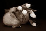 Tulips with Pear II Impressão fotográfica por C. McNemar